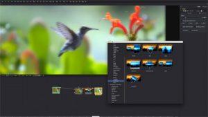 Blackmagic Fusion 17.2.2.4 Crack + Keygen 2021 Mac + Win Download